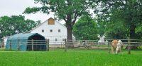Gutshof mit Weidezelt und Pferden