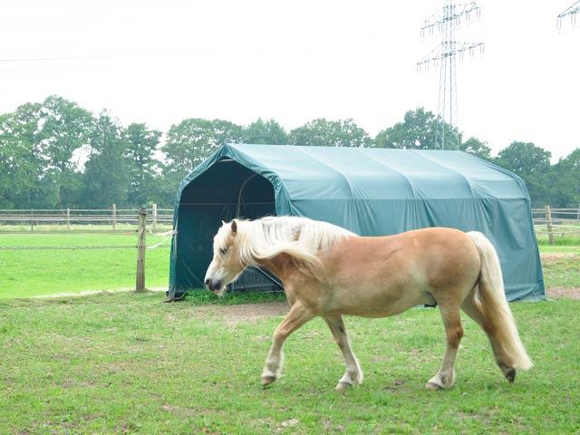 Ein Weidezelt auf der Pferdekoppel