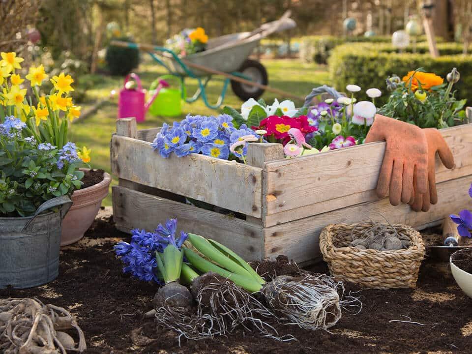 Frühlingszeit ist Gartenarbeits-Zeit! Machen Sie Ihren Garten frühlingsfit